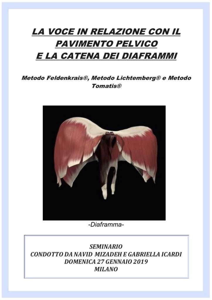 Seminario condotto da Navid Mizadeh e Gabriella Icardi. Domenica 27 gennaio 2019, Milano. - ASD Centro Feldenkrais Movimento Gabriella Icardi